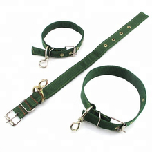 Hot Sale Promotional Pet Collars
